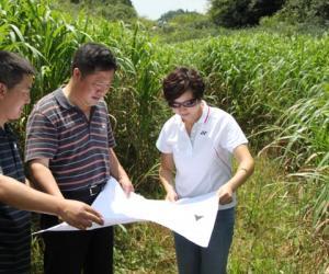 县委书记袁竞调研宽阔水自然保护区开发进程